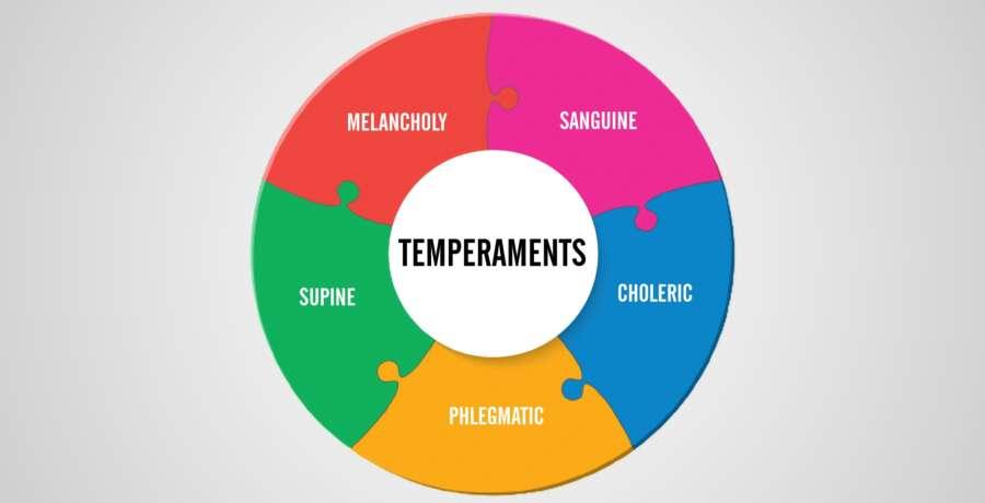 Temperament Inside Square 2